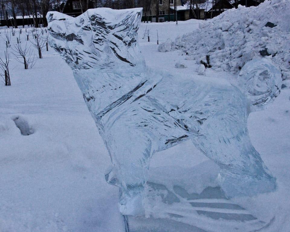 Новогоднюю елку у ТКЦ «Братск-АРТ» демонтируют на следующей неделе