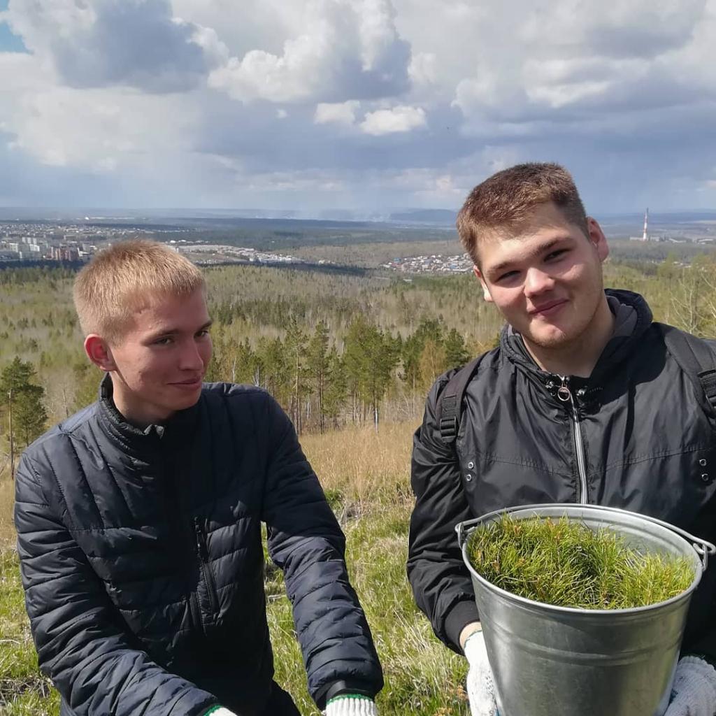 Братчане дружно сажали сосны на горе Солдатская