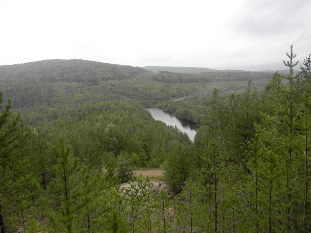 Не губите, мужики! Леса в заказнике «Эдучанский» в Усть-Илимском районе удалось защитить от вырубок