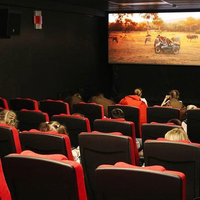 Прикоснуться к важнейшему из искусств. В Усть-Илимске выбран кинозал для проведения всероссийской акции «Ночь кино»