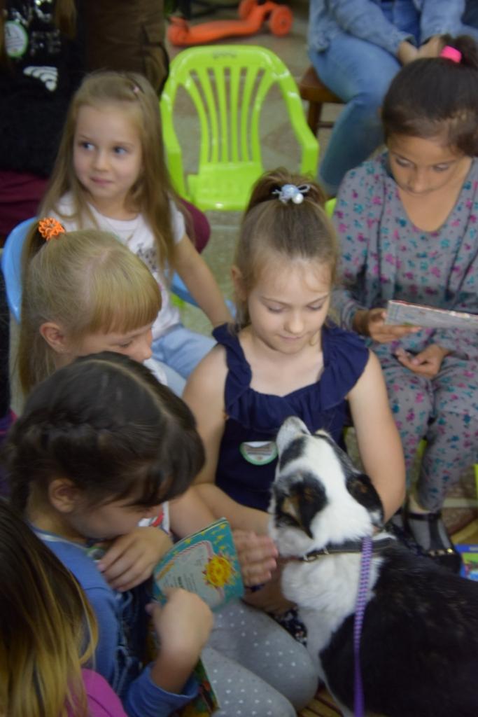 Вход с животными строго…РАЗРЕШЕН! В устьилимской библиотеке «Первоцвет» прошла необычная акция (фото)