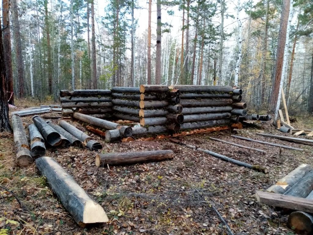 Теплая печка, нары и лыжи, подбитые камусом. В Ангарской деревне строят зимовье охотника