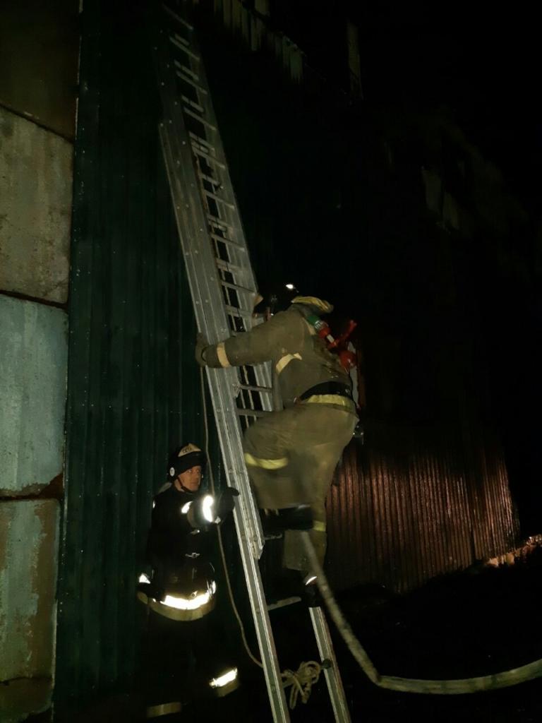 В Братске произошел крупный пожар на деревообрабатывающем производстве (фото)