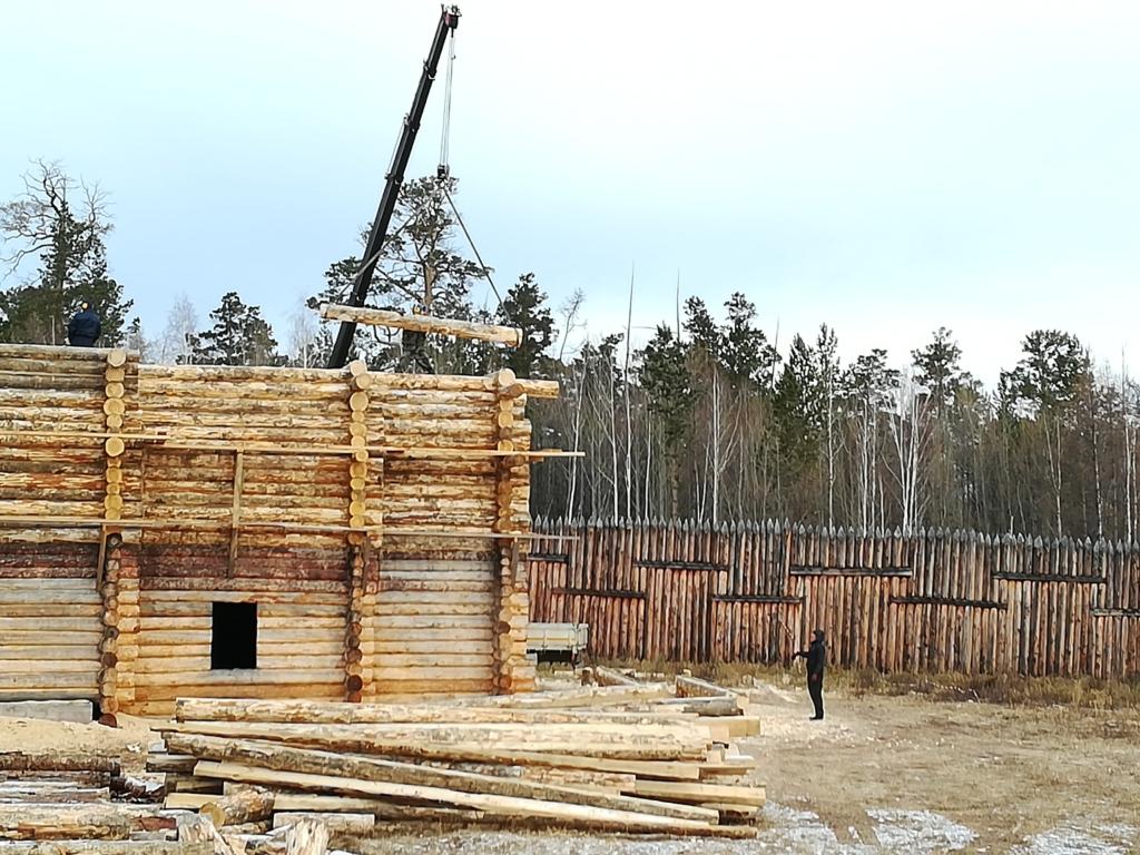 Пришла из века XVII-го. В музее под открытым небом из братских сосен плотники возводят церковь (фото)