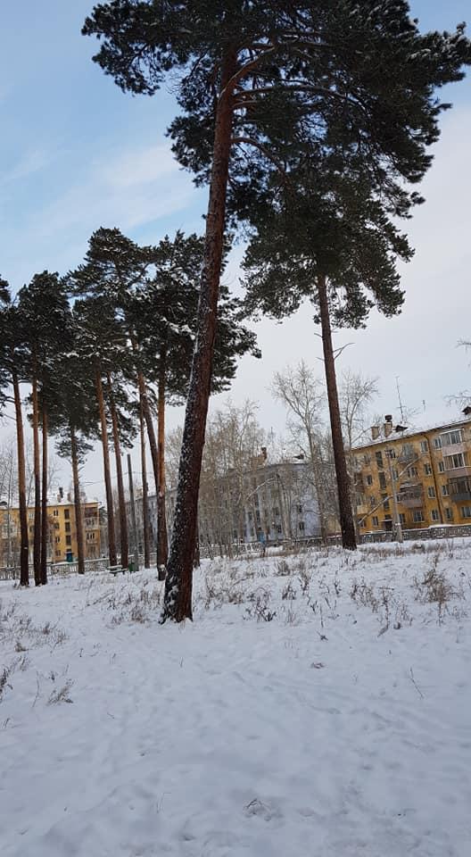 Яна Синявская: По наказам жителей планируем благоустроить парк в Братске