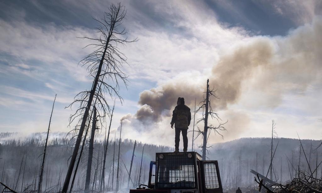 Работа над ошибками. В Иркутской области сократят зоны, в которых было разрешено не тушить лесные пожары