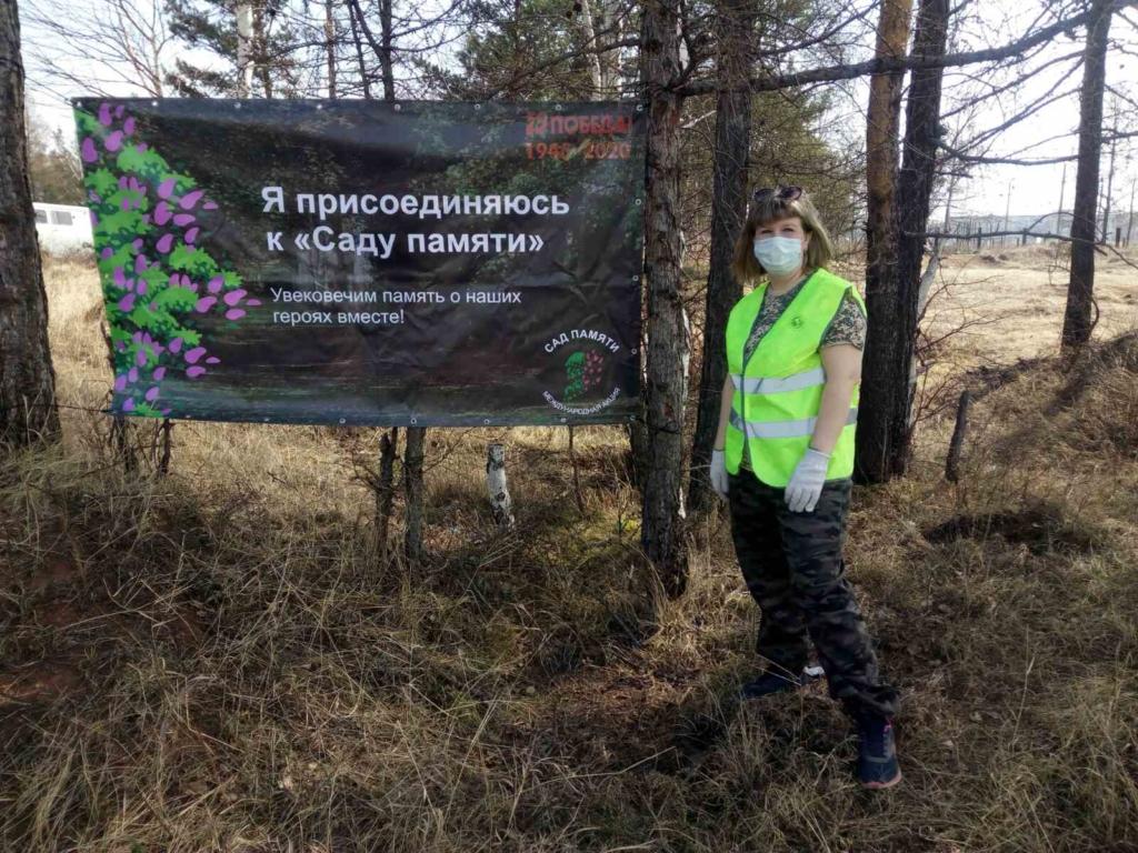 И будет сад! Сотрудники Братского лесничества приняли участие в международной акции и высадили более 10 тысяч сеянцев сосны