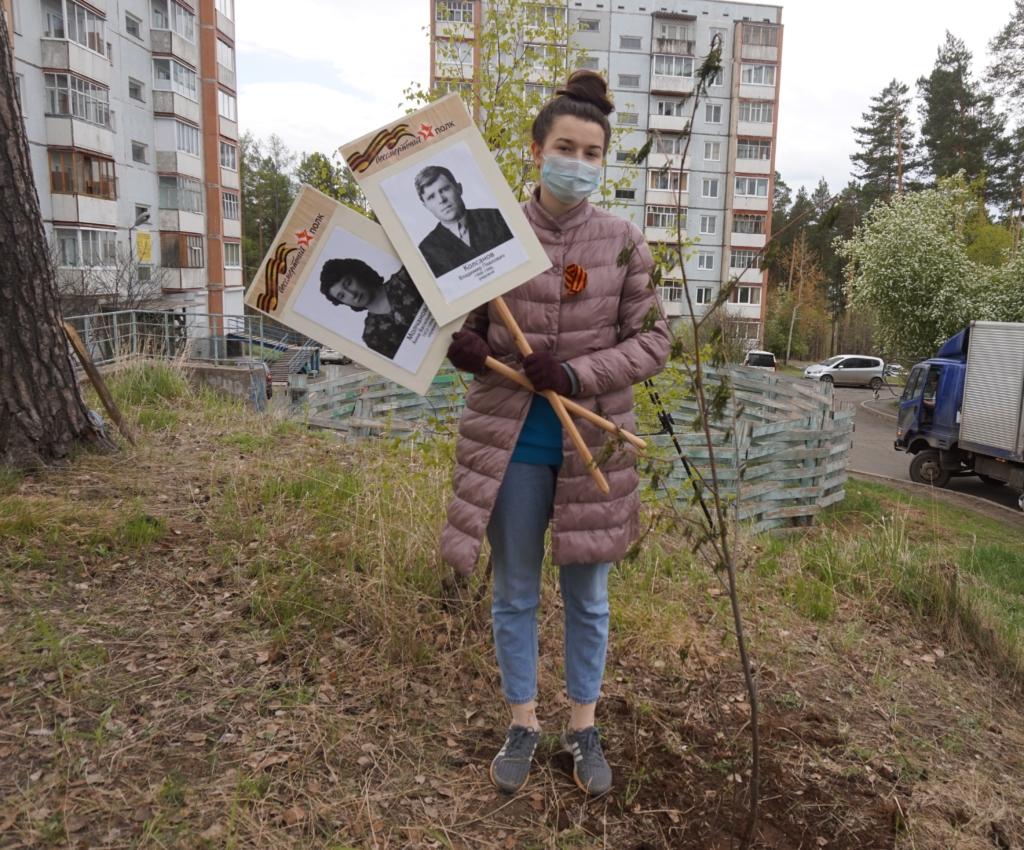 27 млн деревьев в память павших. Усть-Илимск присоединился к Международной акции «Сад памяти» (фото)