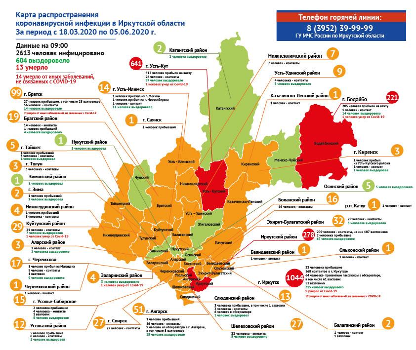 Информация по коронавирусу в Иркутской области на утро 5 июня