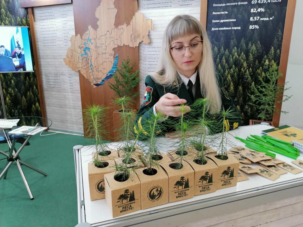 Передовые технологии лесопользования. В Братске открылась «SibWoodExpo-2020»